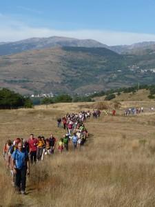 20101007_eurorando
