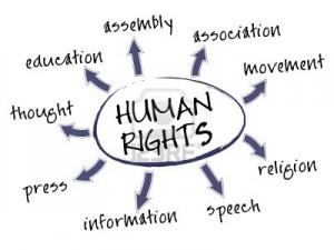 drets humans_2013